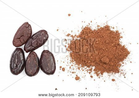 cocoa bean and cocoa powder isolated on white background top view.