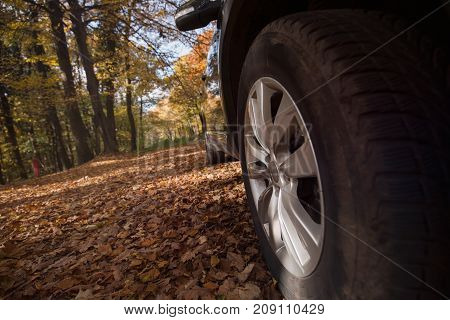 Close-up picture of wheel of car parked in forest