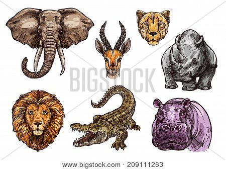 Animal sketch set of african mammal. Elephant, lion, hippo, crocodile or alligator, rhino, cheetah or jaguar, gazelle or antelope isolated vector icon for safari trip, hunting sport or nature design
