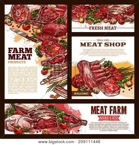 Meat fresh cut vector banner template set. Beef steak, pork ham, bacon and chop, lamb rib and sirloin brisket, chicken or turkey poultry, grill burger sketch poster for butcher shop, meat store design