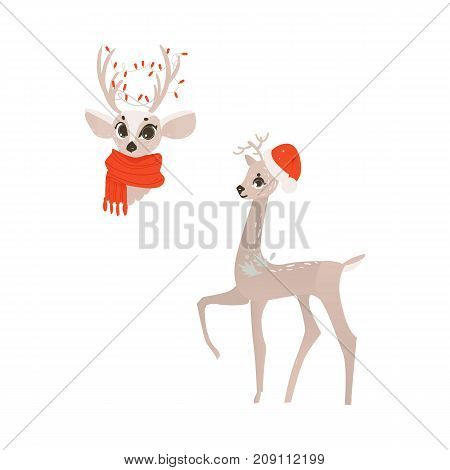 vector flat cartoon cute female christmas reindeer in red scarf head, and deer in christmas hat full lenght set. Winter holiday animal simbol. Isolated illustration on a white background.