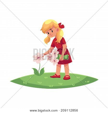 vector flat cartoon teen children - girl collecting field flowers - chamomile, cornflowers at summer. Kids at farm concept. Isolated illustration on a white background.