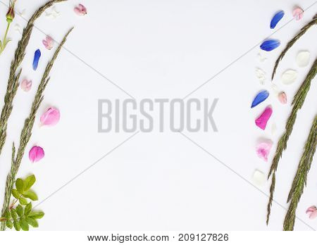 Romantic Floral Flat Lay Border With Spikes And Flower Petals