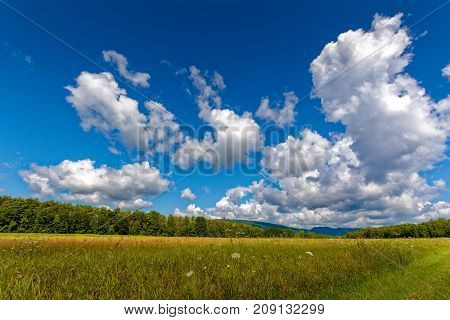 Summer view with clouds and blue sky