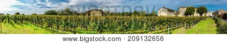 Panoramic view of vineyards in France near St Emilion