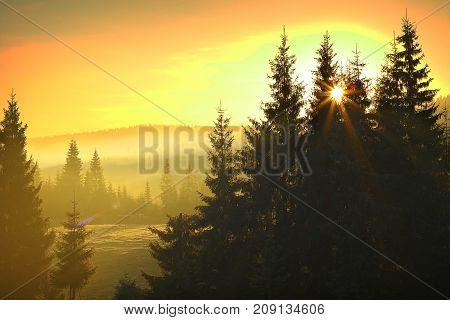 sunrise over mountain forest beautiful orange dawn colors