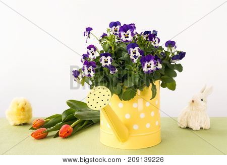 Purple pansy flowers in a yellow watering can surrounded by an Easter bunny chick and a bunch of orange tulips.