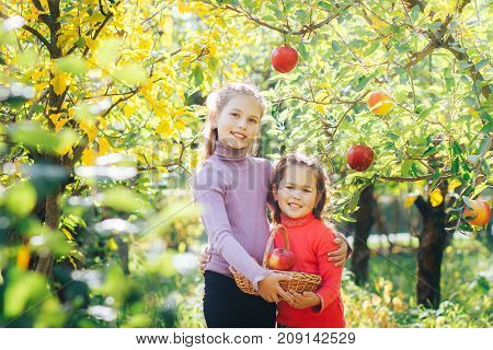 two sisters girls picked up a basket of apples