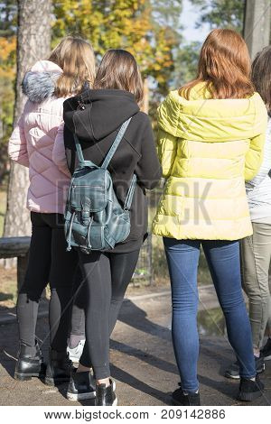 Group of schoolgirls chatting in the park