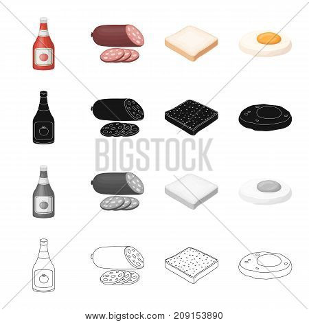 Sandwich, burger, butty and other  icon in cartoon style.Bottle, ketchup, seasoning, icons in set collection