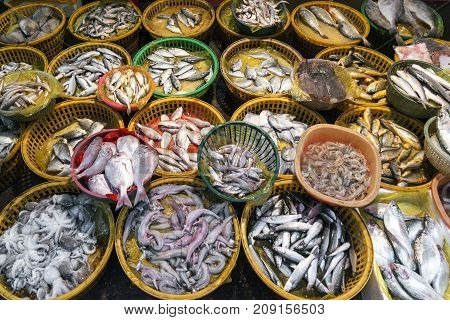 fresh fish and seafood market stall display in xiamen city china