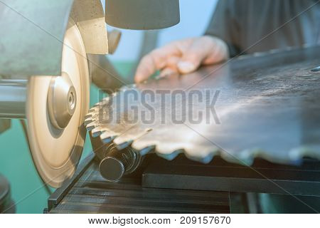 Sharpening Circular Saw, Worker Sharpens A Circular Saw Blade