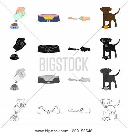 Place, sleep, dog, and other  icon in cartoon style.play, Training, hound icons in set collection
