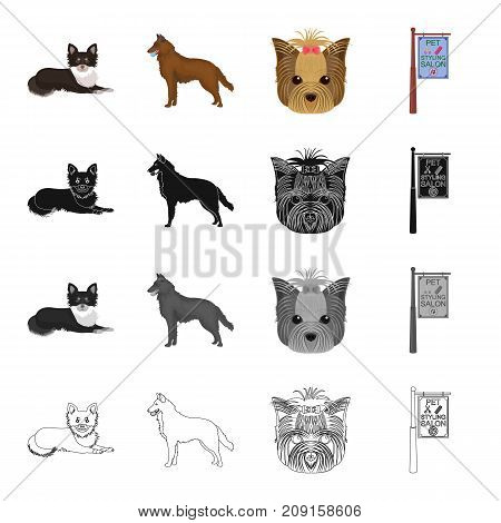 Dog, domestic, animal, and other  icon in cartoon style.Hygiene, prevention, hound icons in set collection