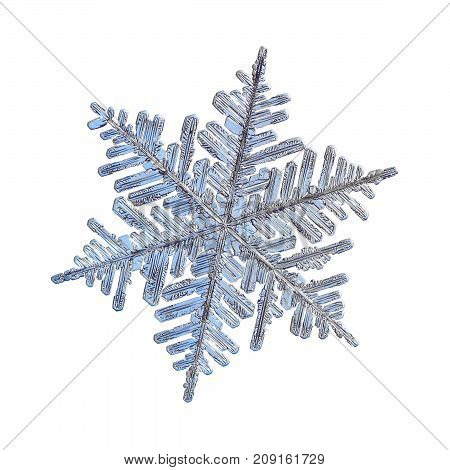Snowflake isolated on white background. Macro photo of real snow crystal: large dendrite  with six long, elegant arms, lots of side branches and complex, ornate shape.