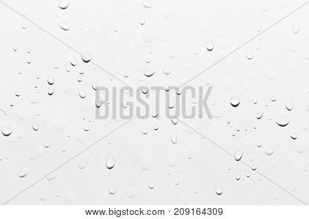 drops of water on white. close-up . Photo of abstract background
