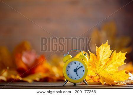 Vintage Alarm Clock And Maple Tree Leaves