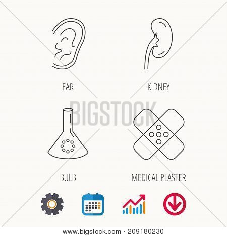 Lab bulb, medical plaster and ear icons. Kidney linear sign. Calendar, Graph chart and Cogwheel signs. Download colored web icon. Vector
