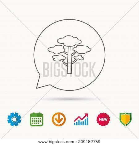 Pine tree icon. Forest wood sign. Nature environment symbol. Calendar, Graph chart and Cogwheel signs. Download and Shield web icons. Vector