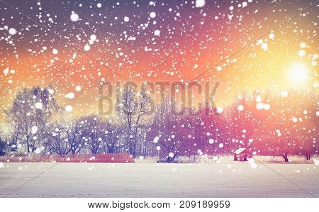 Winter snowfall at morning colorful sunrise. Christmas background. Snowflakes glowing on bright sun. Xmas and New Year scene. Magical winter in fairy
