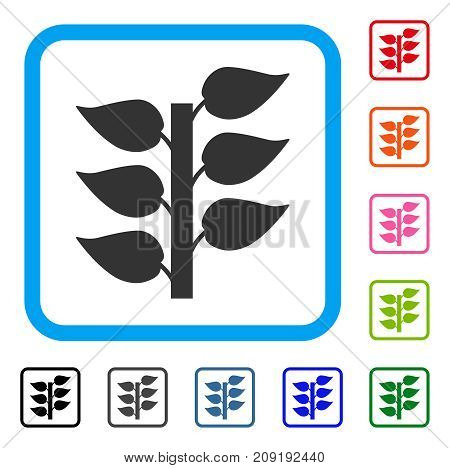 Flora Plant icon. Flat grey iconic symbol inside a light blue rounded rectangle. Black, gray, green, blue, red, orange color variants of Flora Plant vector. Designed for web and software UI.