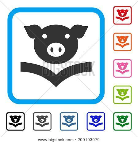 Pig Knowledge icon. Flat gray iconic symbol inside a light blue rounded rectangular frame. Black, gray, green, blue, red, orange color variants of Pig Knowledge vector.