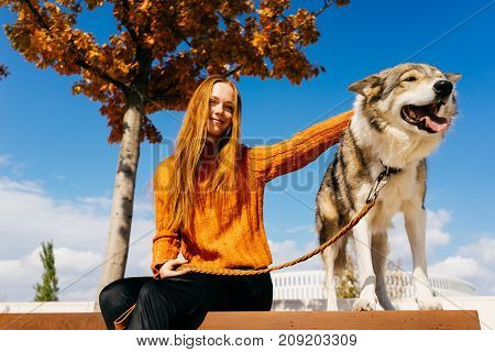 Red-haired lovely girl in an orange sweater sits on a bench in a beautiful park and looks at the camera. The dog sits next to the girl on a leash. It's a beautiful autumn day.