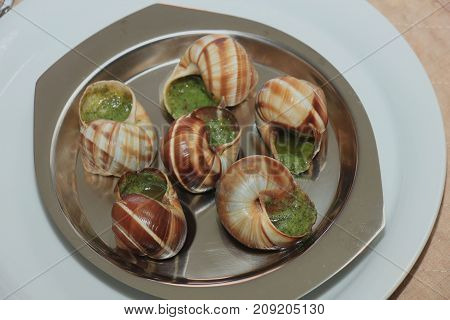 Escargots de Bourgogne on a metal plate just out of the oven