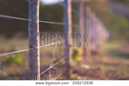 Fence made of wire and wooden log outdoors.