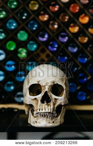 Halloween Skull. Spooky Halloween Human Skull over Colorful Background