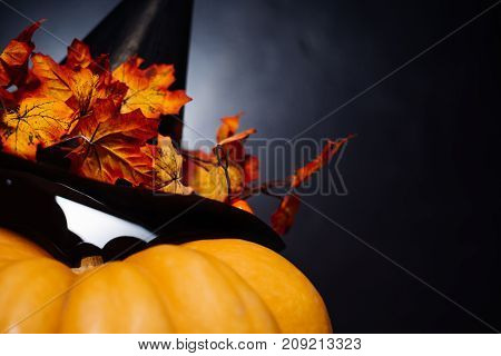 big Halloween pumpkin, witch hat with fallen autumn leaves lies on a pumpkin. Halloween background, Halloween style, party