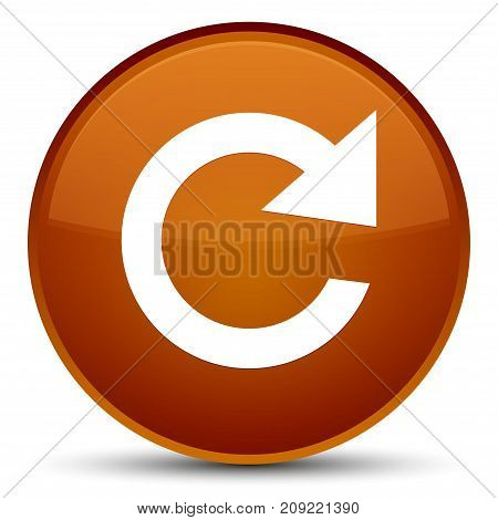 Reply Rotate Icon Special Brown Round Button