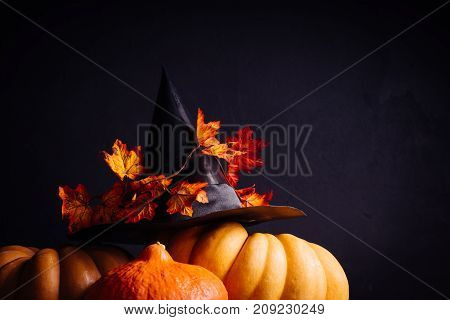 autumn holiday, a large pumpkin,dry grass, Halloween, a mesmerizing picture