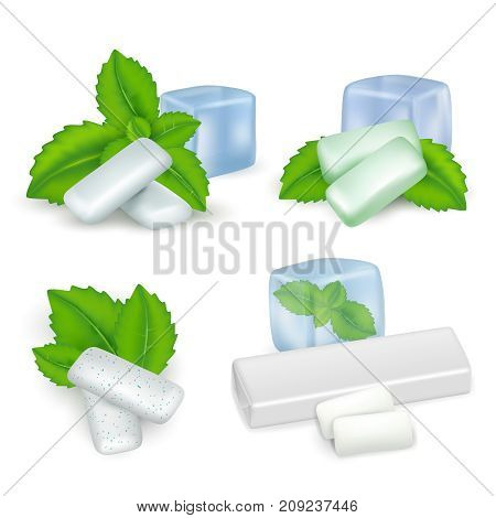 Vector realistic set of bubble gum with mint. Mint chewing gum types.
