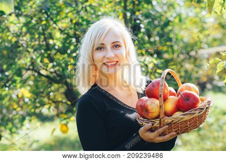 A lovely blonde girl is holding a basket of fresh and ripe apples.