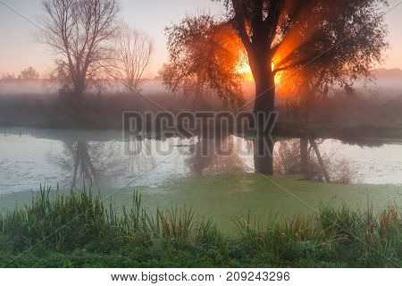 Beautiful misty dawn in the spring on the river.