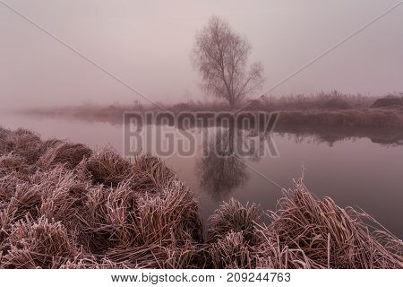 Foggy dawn on the river in late autumn.