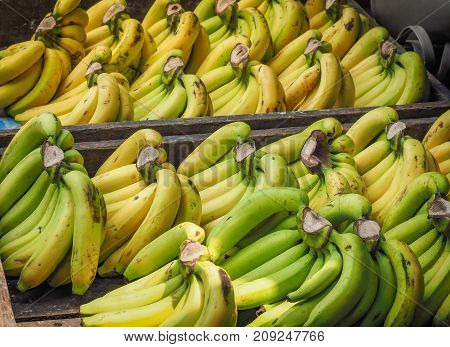Bunch of ripened organic bananas at farmers market, Thailand