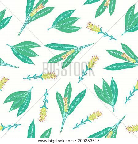 Natural seamless pattern with turmeric leaves and inflorescences. Beautiful Ayurvedic flowering plant hand drawn on white background. Colorful floral vector illustration for fabric print, backdrop