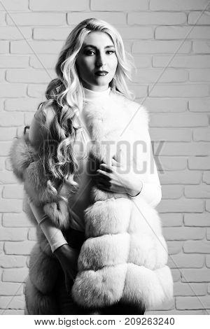 young fashionable sexy pretty woman with beautiful long curly blonde hair in waist coat of white fur and fashion makeup on brick wall studio background