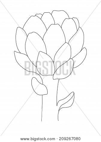 Artichoke print. Black lined Icon on white background. Healthy organic food.