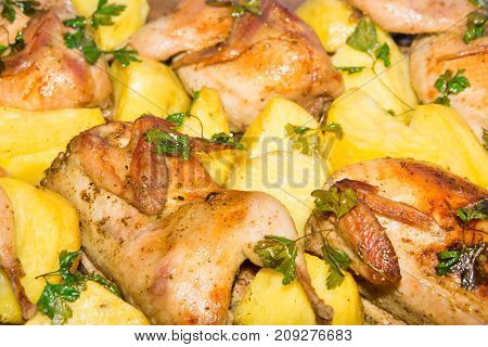 Quail meat baked in the oven. Freshly cooked quail with a side dish of new potatoes and parsley.