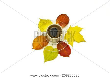 Autumn leaves and a cup of coffee with a saucer on a white background