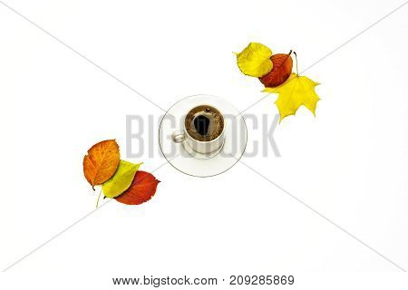 On a white background autumn leaves and a cup of coffee with a saucer