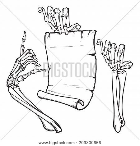 Halloween design elements. Pair of skeleton hands pointing with a finger and holding a banner. linear drawing isolated on white background. EPS10 vector illustration