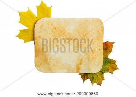 autumn background - old paper texture on the leaves