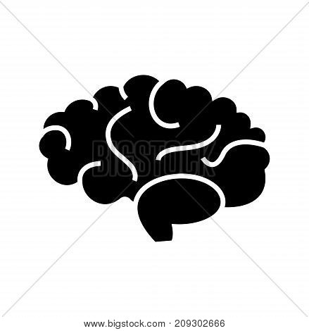brain icon, illustration, vector sign on isolated background