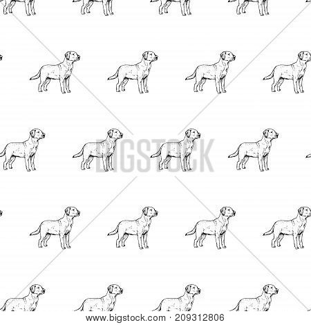 Hand drawn background with dog labrador. Vector seamless pattern. Vintage style. Doodle line graphic design. Black and white drawing mammal. Vector sketch.