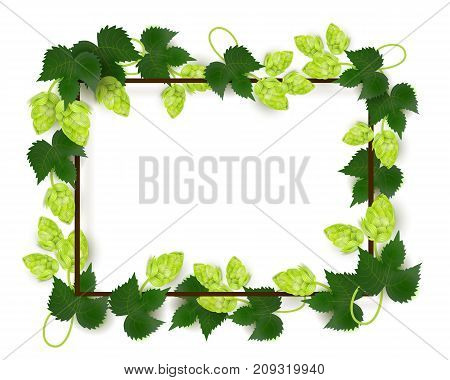 vector poster, banner or placard with lager beer hop leaves square template. Ready for your design mockup. Isolated illustration on a white background.
