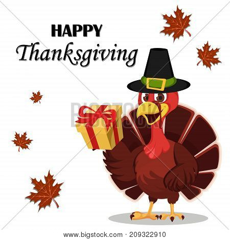 Thanksgiving greeting card with a turkey bird wearing a Pilgrim hat and holding a gift box. Funny cartoon character for holiday. Vector illustration on white background.